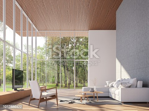 istock Tropical house living room 3d render 1012886422
