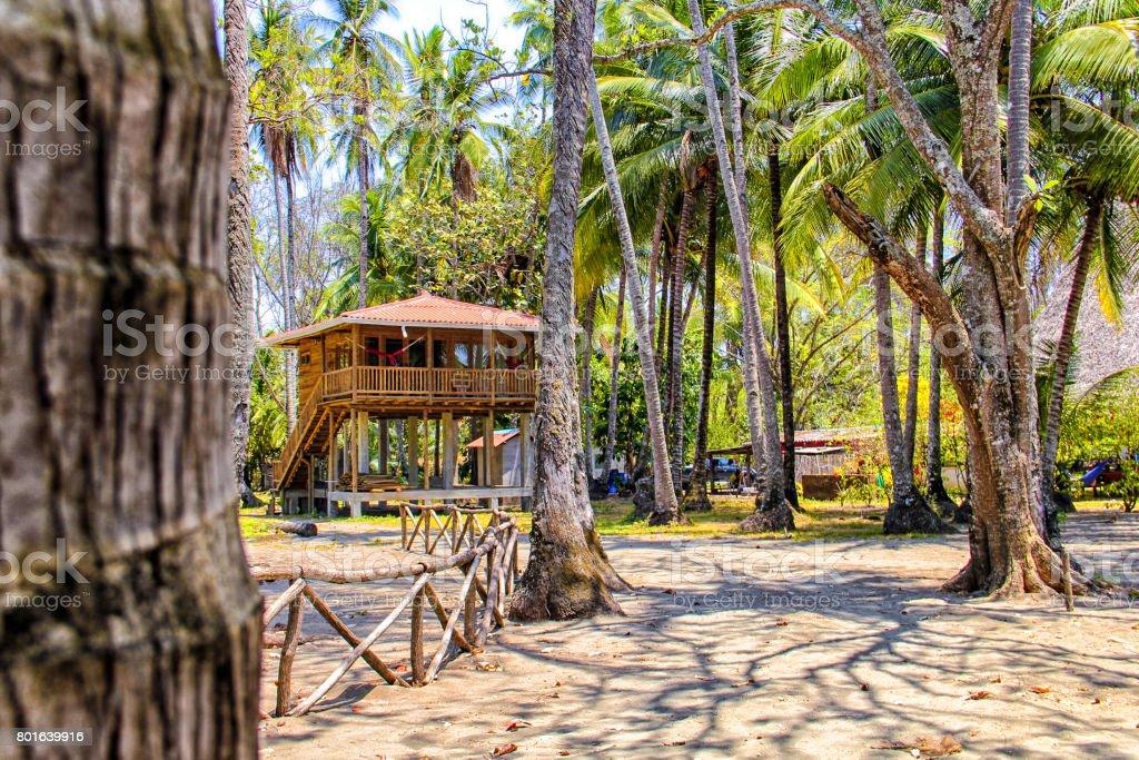 Tropical house stock photo