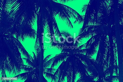Patern of palm tree and green design