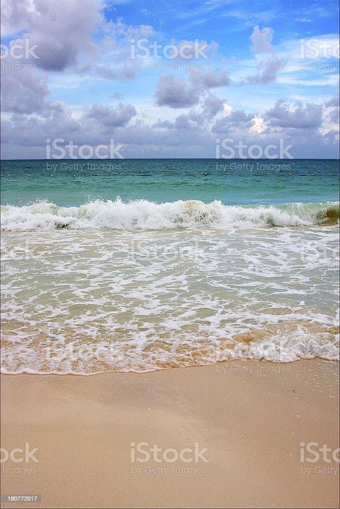 tropical in mexico playa del carmen royalty-free stock photo