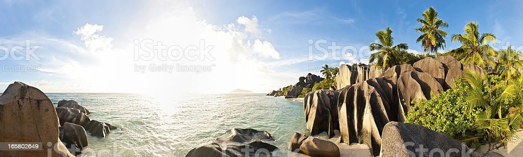 Tropical island beach sunburst palm panorama stock photo