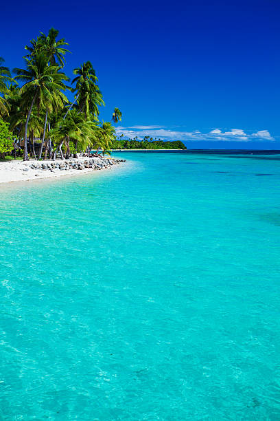 tropical island in fiji with sandy beach - fiji stock photos and pictures