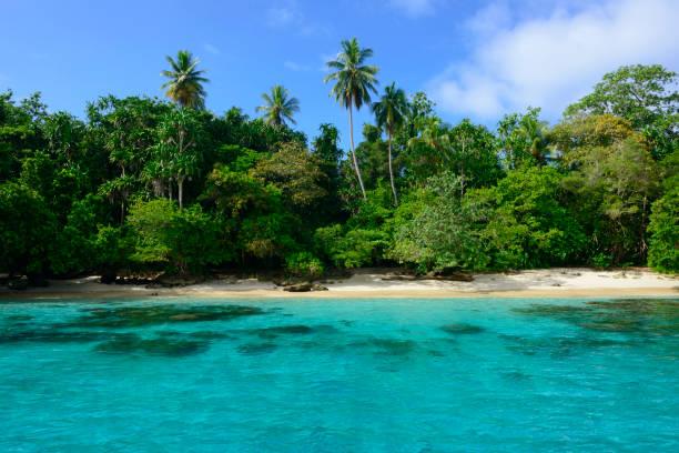 Tropische Insel in Madang, Papua-Neu-Guinea – Foto