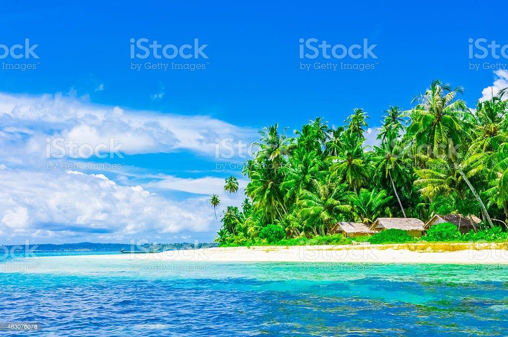 paysage asiatique insulaire