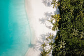 Tropical island shore at Maldives Indian Ocean atoll from above with palm tree sandy beach