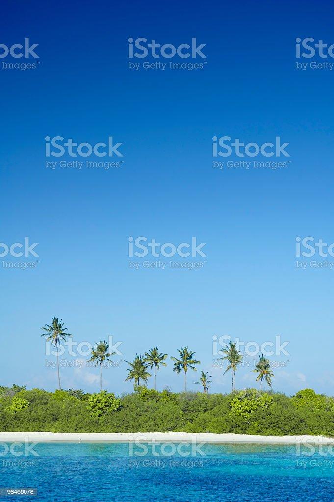 열대 섬 (Paradise, 빅 스카이 royalty-free 스톡 사진