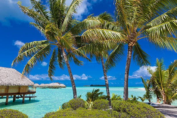Tropical Island Paradise Luxury overwater bungalow vacation resort on Bora Bora island in Tahiti. south pacific ocean stock pictures, royalty-free photos & images