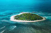 istock Tropical Island 1195103941