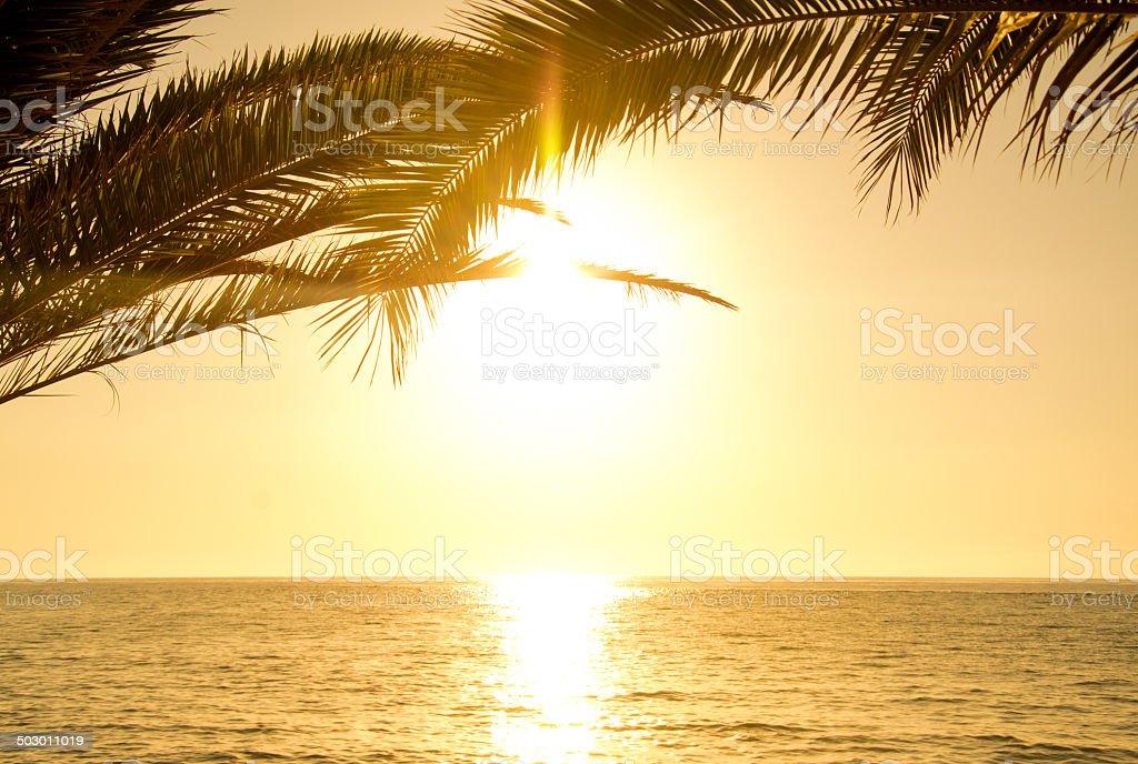 Tropical Island Sunrise stock photo