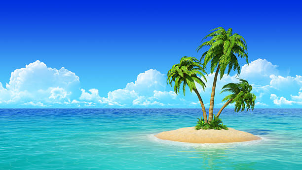 Tropical island with palms. stock photo