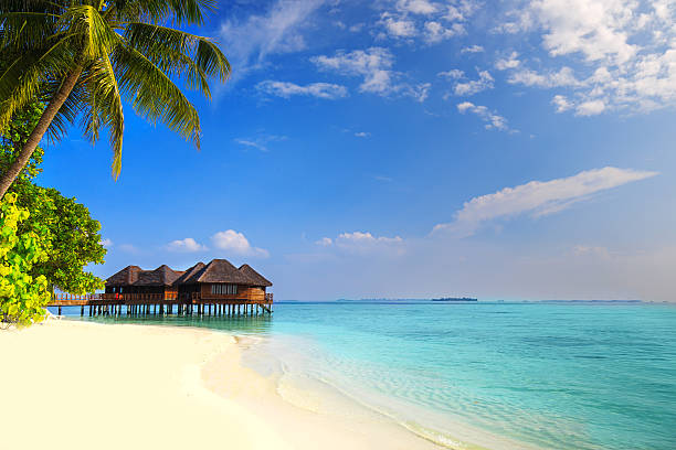 Tropical island with sandy beach, palm trees and overwater bungalow Tropical island with sandy beach, palm trees, overwater bungalows and tourquise clear water bungalow stock pictures, royalty-free photos & images