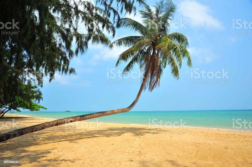 Tropical Islands in Summer Season foto de stock royalty-free