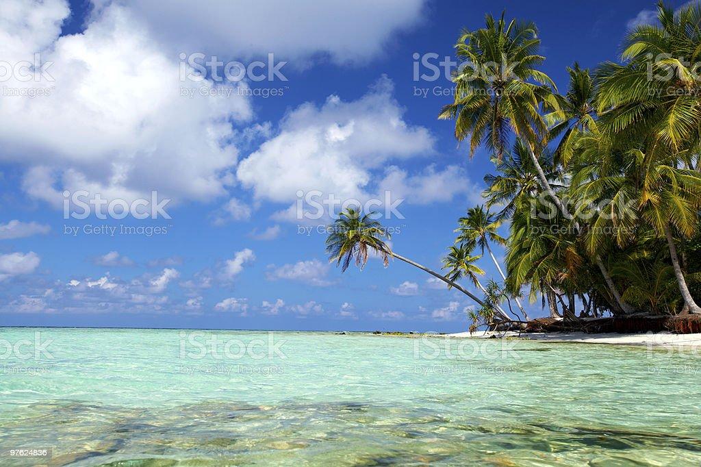 Tropical Lagoon royaltyfri bildbanksbilder