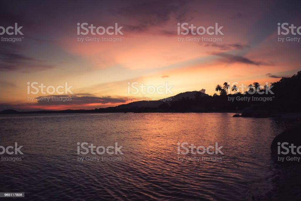 Tropical landscape beach vintage orange sunset sky  palm trees coastline zbiór zdjęć royalty-free