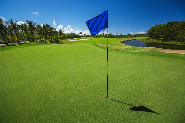 Tropical landscape of a golf court with palm trees stock photo