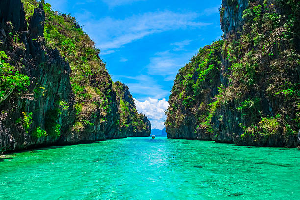 tropical landscape - philippines stock photos and pictures