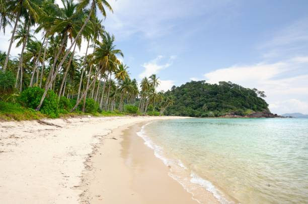 Tropical landscape with deserted amber sand beach, coconut palm trees and turquoise tropical sea on Koh Chang island in Thailand Tropical landscape with deserted amber sand beach, coconut palm trees and turquoise tropical sea on Koh Chang Island in Trat province of Thailand koh chang stock pictures, royalty-free photos & images