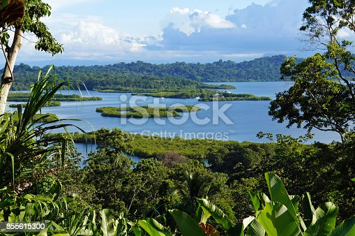 Tropical landscape with mangrove island in the archipelago of Bocas del Toro, Caribbean, Panama, Central America