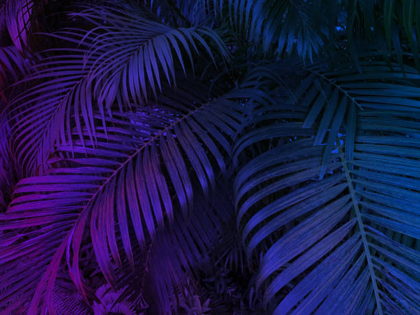 tropical leaf exotic background with neon glow colors stock photo