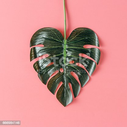 istock Tropical leaf in shape of a heart. Mothers day love concept. Flat lay. 666984146