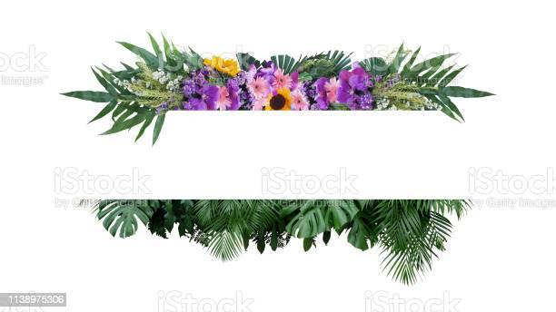 Tropical leaves foliage plant bush with colorful flowers floral picture id1138975306?b=1&k=6&m=1138975306&s=612x612&h=eymnot6enbpjjxn5jizehnvr4uclksfqr5vqydanse8=