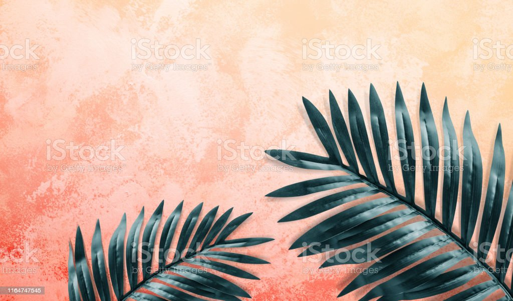 Tropical Leaves Foliage Plant Close Up With Yellow Color Space Background Stock Photo Download Image Now Istock Beginning of a dialog window, including tabbed navigation to register an account or sign in to an existing account. https www istockphoto com photo tropical leaves foliage plant close up with yellow color space background gm1164747545 320248007