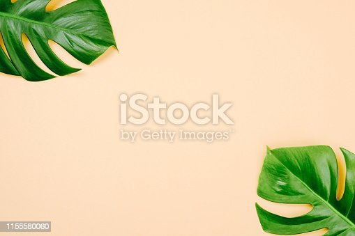 1153498948 istock photo Tropical leaves Monstera on yellow background with space for a text. Flat lay, top view, pastel colors, summer minimal concept 1155580060