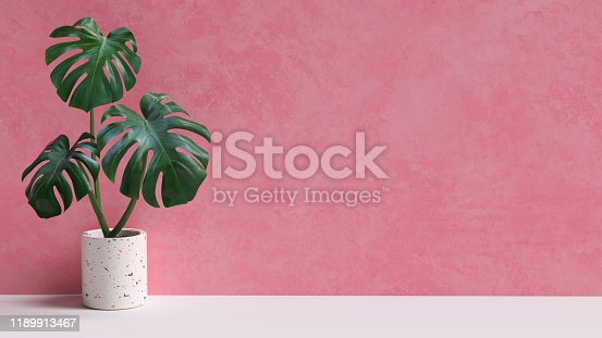 Tropical leaves on pink background copy space. Monstera plant pot houseplant minimal composition. 3d rendering.