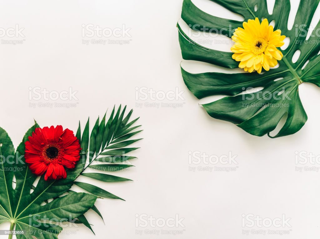 Tropical leaves with flowers. Flat lay trendy background. Top view