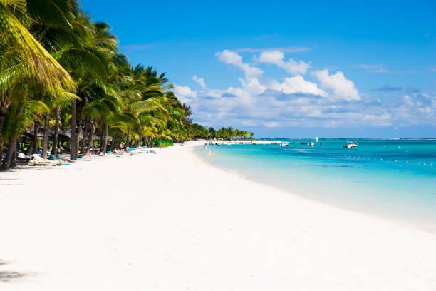 Tropischer Luxusstrand mit Palmen, blauem Ozean und Himmel – Foto