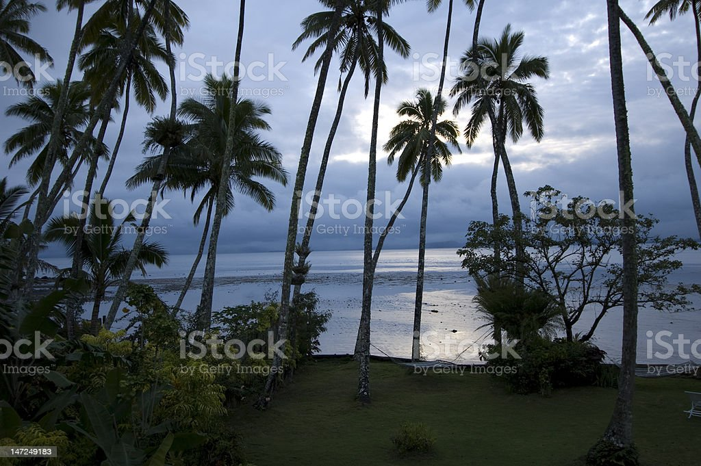 Tropical Morning in Fiji royalty-free stock photo