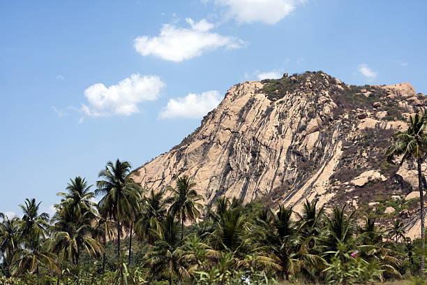 Montanha tropical - foto de acervo