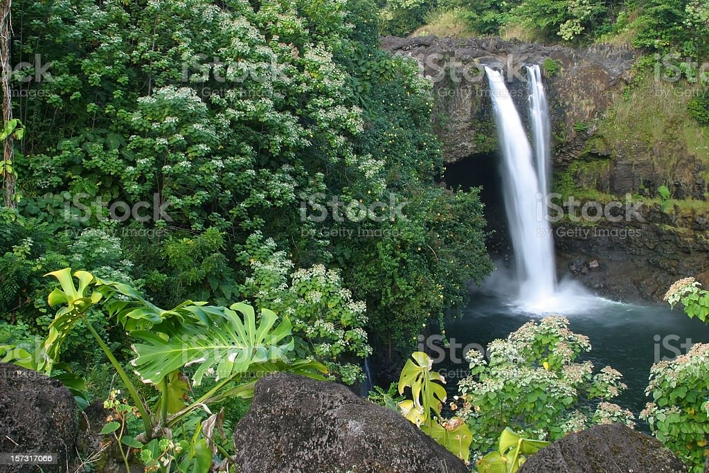 Tropical oasis depicting a waterfall, Rainbow Falls, Hawaii stock photo