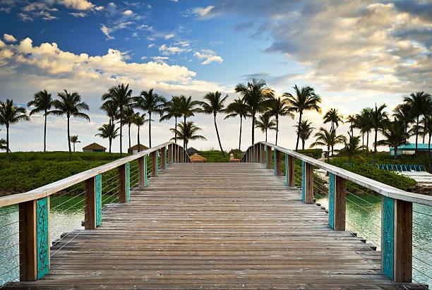 tropical ocean beach summer vacation palm trees paradise resort bridge - nassau new providence stockfoto's en -beelden