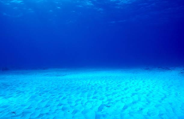 Tropical Ocean Etage – Foto