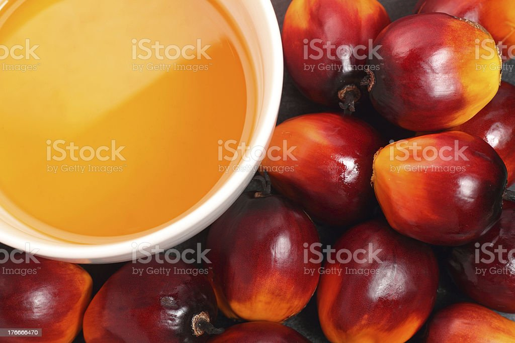 Tropical palm fruit with cooking oil in a white bowl royalty-free stock photo