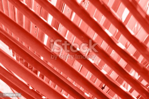 istock Tropical palm leaf, floral pattern background. 1080349312