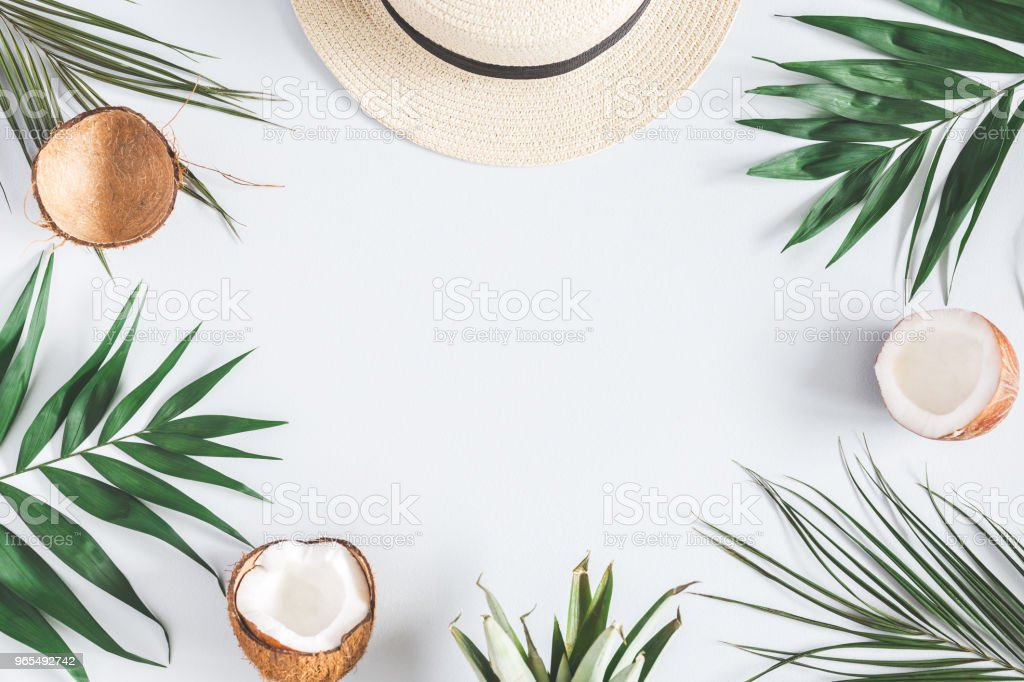 Tropical palm leaves, hat, coconut on pastel blue background royalty-free stock photo