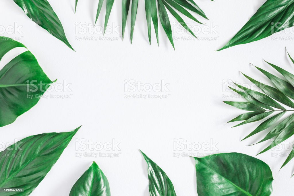 Tropical palm leaves on gray background.  Flat lay, top view stock photo