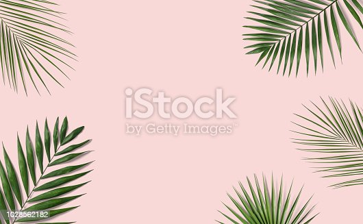 istock Tropical palm leaves on pink background 1028562182