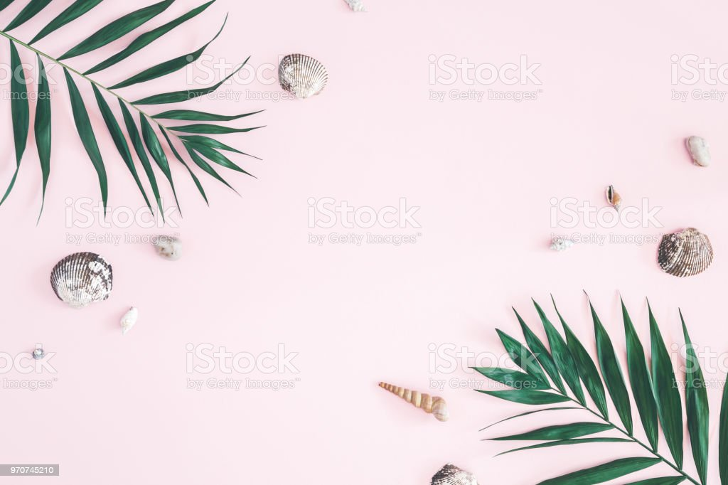 Tropical palm leaves, seashells on pastel pink background. Summer...