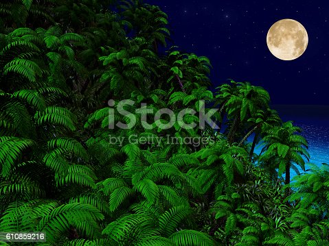 483959606 istock photo Tropical palm trees and ocean at night 610859216