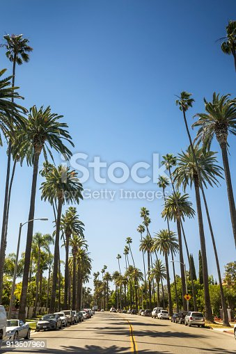 Sun shines through palm trees by the Sunset Strip in Los Angeles California USA