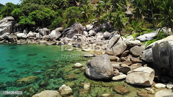 Tropical palms and stones on small beach. Many green exotic palms growing on rocky shore near calm blue sea in Hin Wong Bay on sunny day in Thailand. Koh Tao exotic paradise island