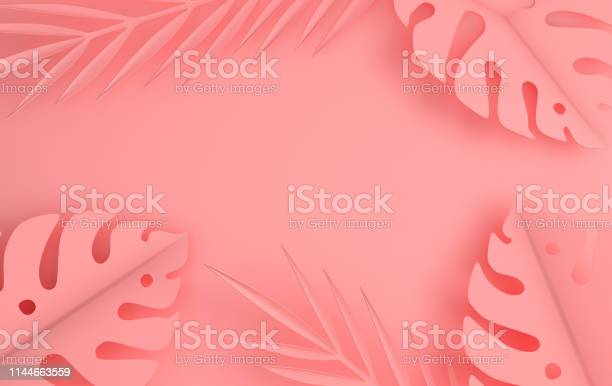 Tropical paper palm leaves frame summer tropical pastel colored leaf picture id1144663559?b=1&k=6&m=1144663559&s=612x612&h=gmhfa  mkpoczidvhfyrwjfmt39ydczn 7csxsd3zem=