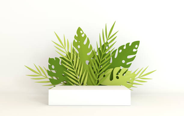 Tropical paper palm, monstera leaves frame, podium platform for product presentation. Summer tropical leaf. Origami exotic hawaiian jungle, summertime background. Paper cut 3d render Tropical paper palm, monstera leaves frame, podium platform for product presentation. Summer tropical leaf. Origami exotic hawaiian jungle, summertime background. Paper cut 3d render stereoscopic image stock pictures, royalty-free photos & images