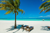 Tropical paradise beach at Dhiffushi Holiday island at South Ari atoll, Maldives. Beautiful turquoise Indian ocean sea with white sand. Luxury travel holidays background. Property released. Photo taken by Sony a7R II, 42 Mpix.