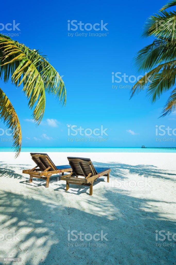 Tropisches Paradies auf Dhiffushi Holiday Island, Süd Ari Atoll, Malediven – Foto