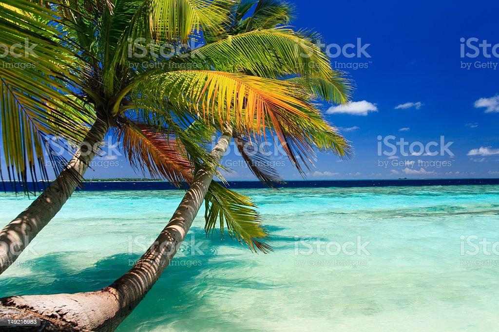 A tropical paradise at Maldives in the summer season royalty-free stock photo