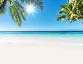Tropical paradise beach and sun